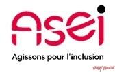 Logo-ASEI Buggy brousse